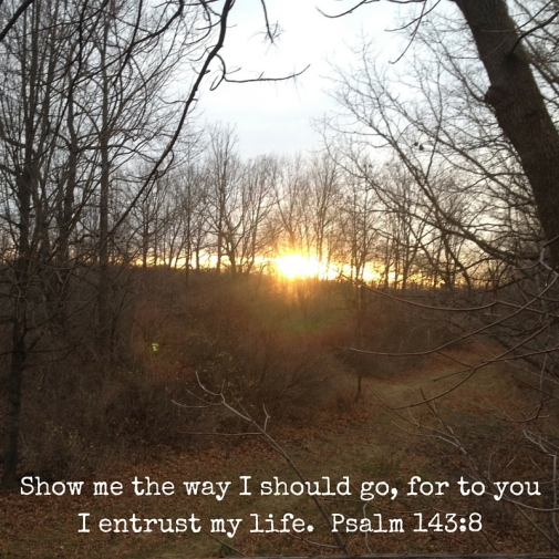 Show me the way I should go, for to you I entrust my life. Psalm 143-8