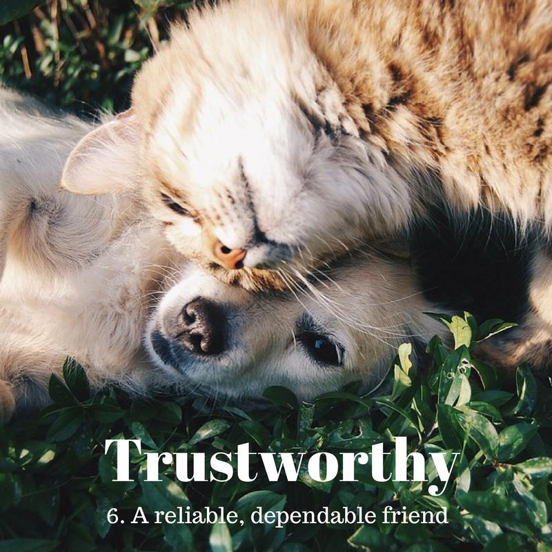 Trustworthy6